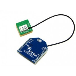GPS Bee kit
